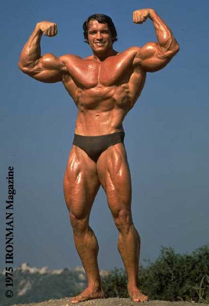 Om en stund förstår ni att den här bilden är relevant – på en BMI-nivå i alla fall.