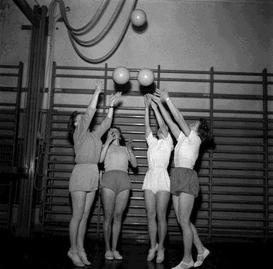 gympa_1953